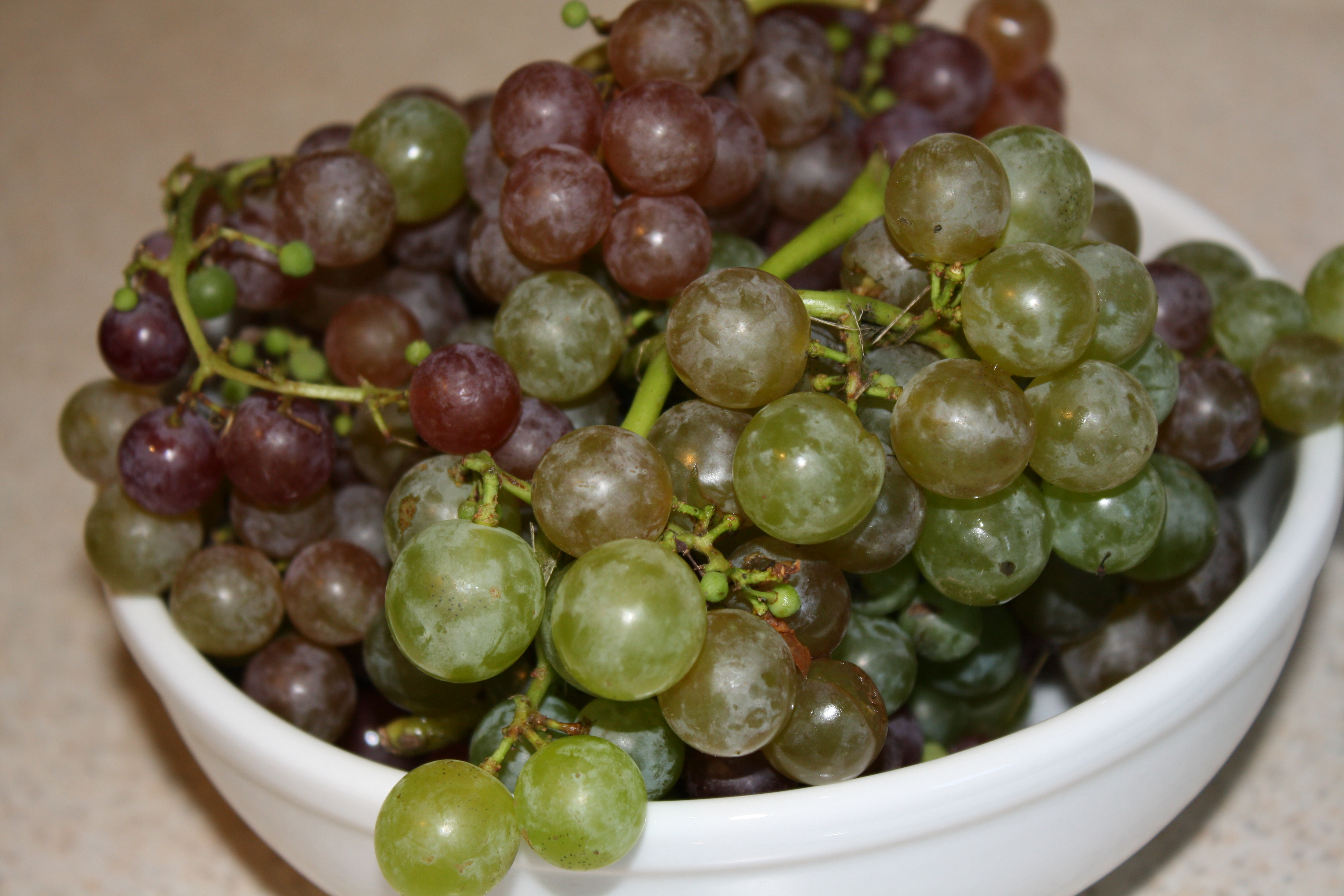 nutritional value of grapes pdf
