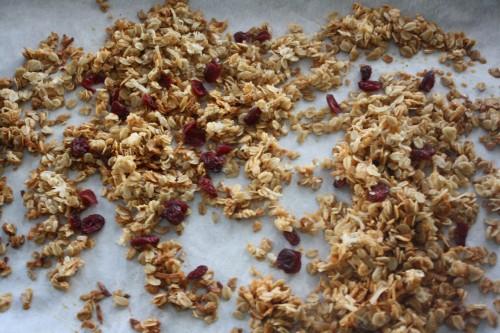 Nut Free Granola 1
