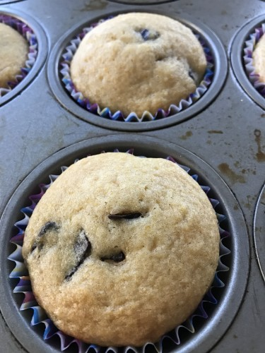 pumpkin chocolate chip muffins in pan