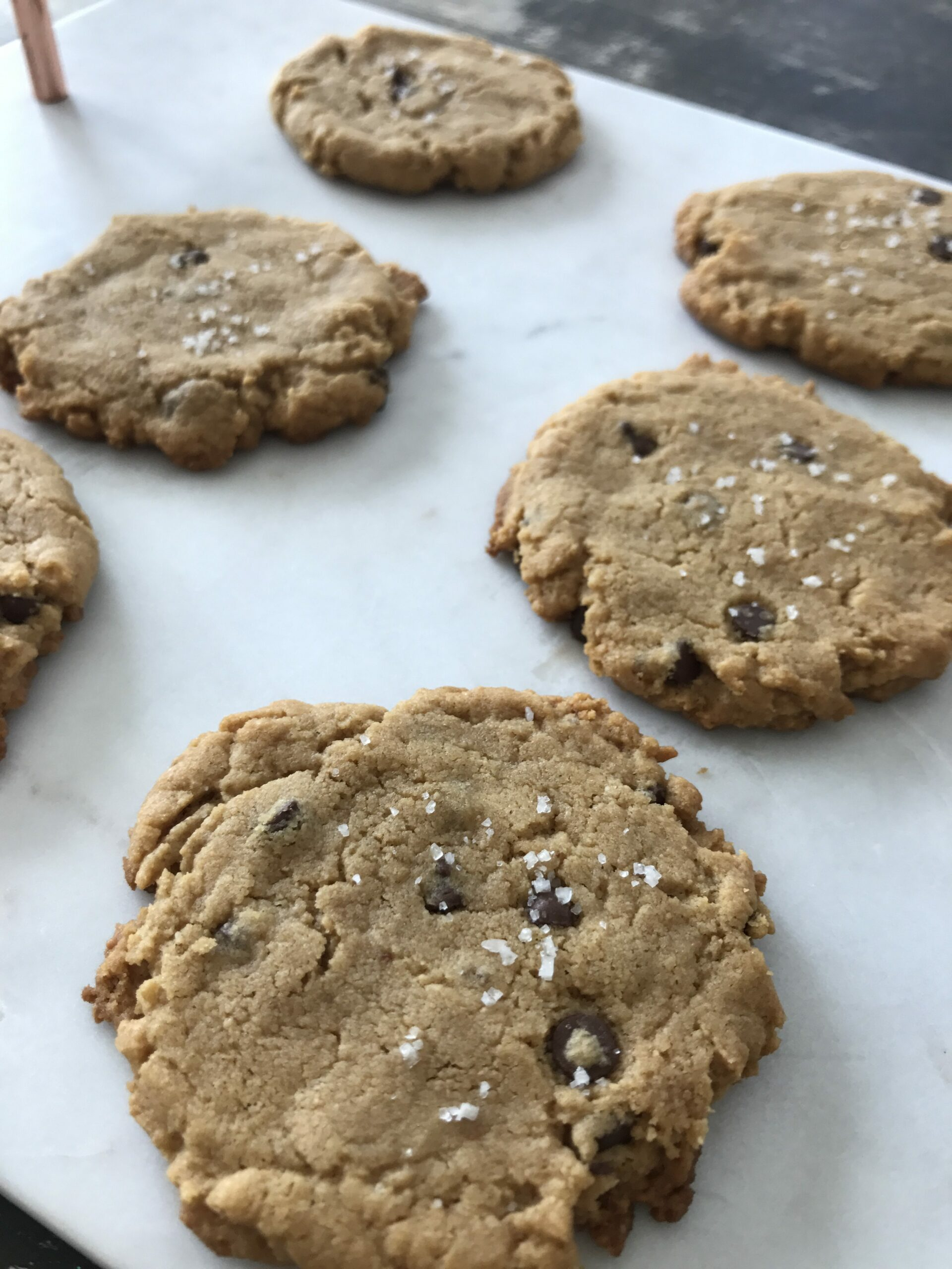 gluten-free flourless peanut butter chocolate chip cookies